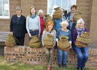 Willow Organic Baskets