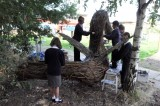 Willow Sculpture in schools