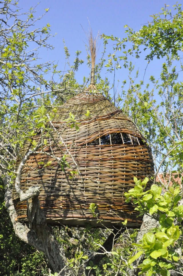 Willow tree house at biteabout arts for The willow house
